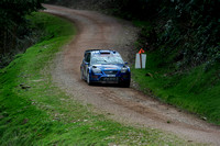 Somerset Stages Rally Chargot Woods_3224
