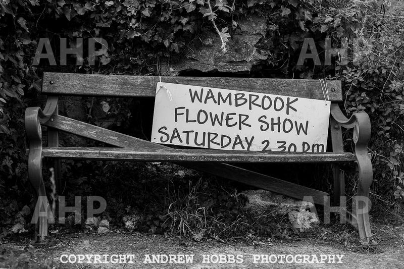 Wambrook Flower Show Centenary 091