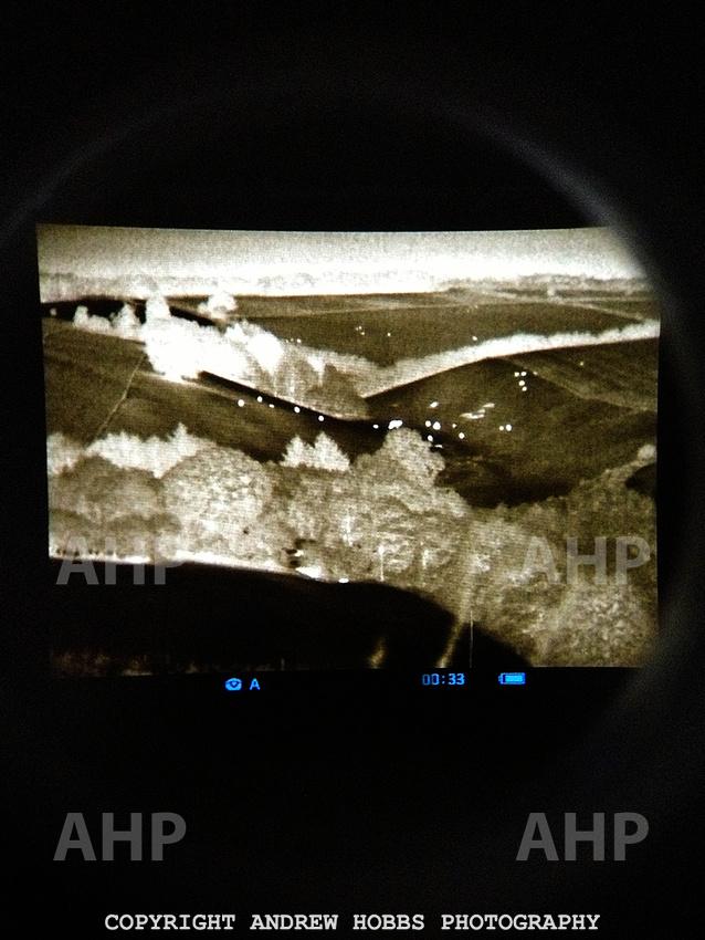 Thermal Imaging Badger Cull 2014