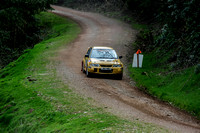 Somerset Stages Rally Chargot Woods_3295