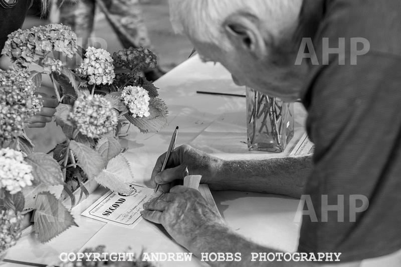 Wambrook Flower Show Centenary 176