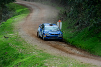 Somerset Stages Rally Chargot Woods_3272