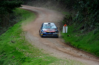 Somerset Stages Rally Chargot Woods_3304