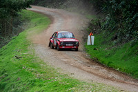 Somerset Stages Rally Chargot Woods_3321