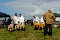 North Devon Show 2014 002