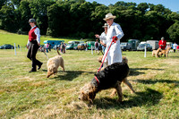 Dunster Country Fair 2014 001