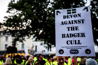 Minehead Badger Cull Protest_8677