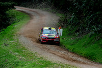 Somerset Stages Rally Chargot Woods_3257
