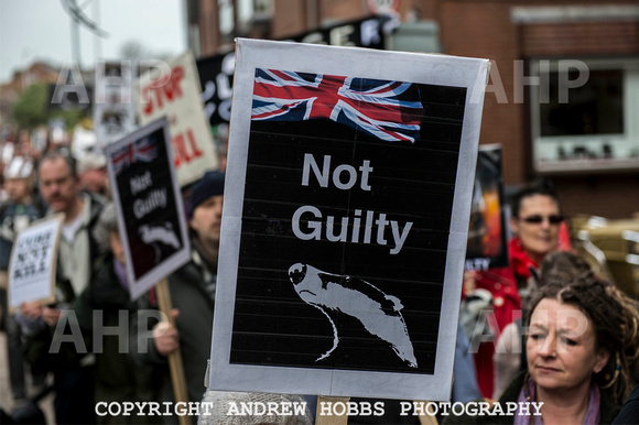 Exeter_march_ against_the_badger_cull 030