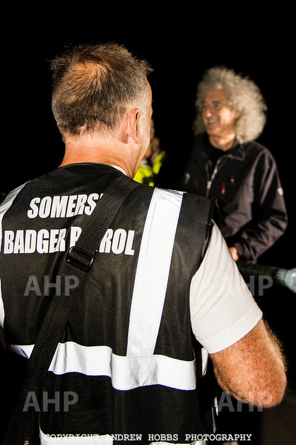 Brian May Badger Cull 2014