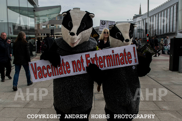 Exeter_march_ against_the_badger_cull 050