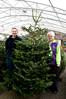 Wyevale ND Hospice Christmas tree-6745