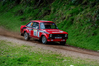 Somerset Stages Rally Chargot Woods_3327